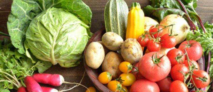 こどもキッチンの教室では、無農薬、低農薬の野菜や果物、無投薬の魚や肉、添加物のない加工品を選び、なるべく地産地消の食材を使用しています。